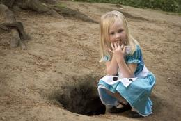 Will Alice go down the rabbit hole?